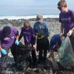 cleaning up the shore of robben island