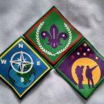 Advancement badges on Light Blue Portrait web