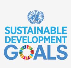profile SDG post