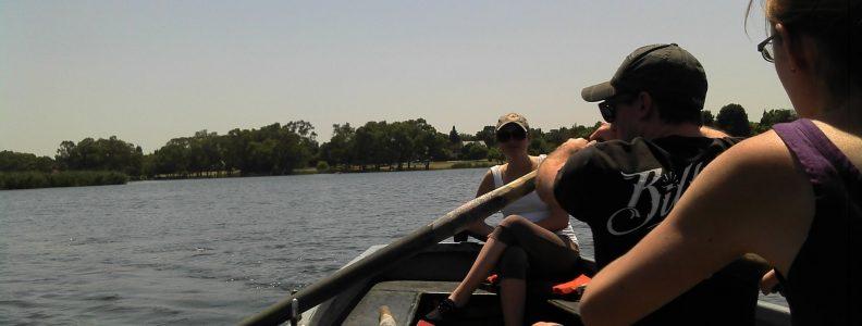 rover rowing